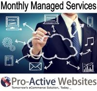 Monthly Managed Services Level B $54.99 per hour (MMSB)